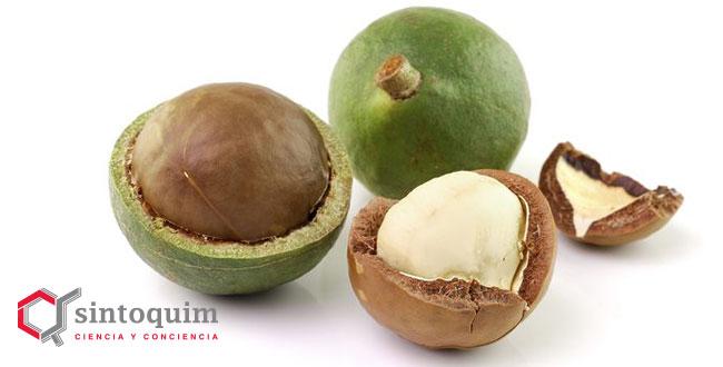 Floratech Macadamia Oil refined