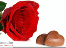 Tulip Aromatics Fragancias Rosas Y Chocolate