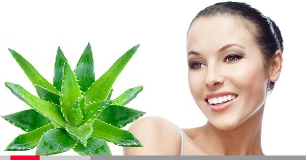 Sintonews Tendencias de Diciembre Skin Care